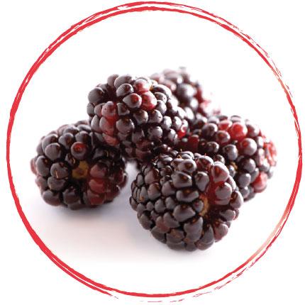 Purée de boysenberry