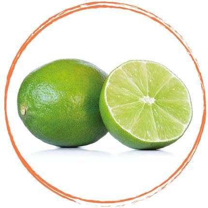 Purée de citron vert