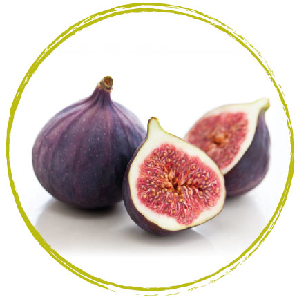 Purée de figue violette