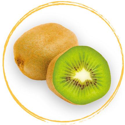 Purée de kiwi