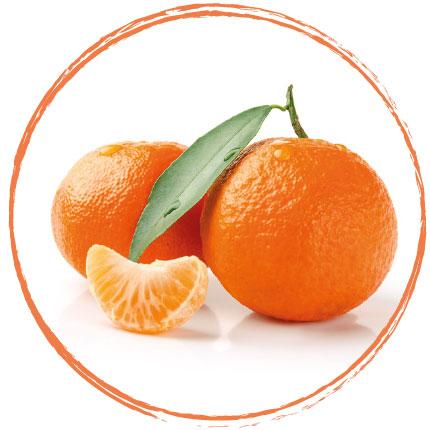 Purée de mandarine