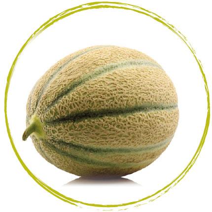 Melon Charentais (morceau) surgelé