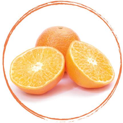 Orange (lanières)