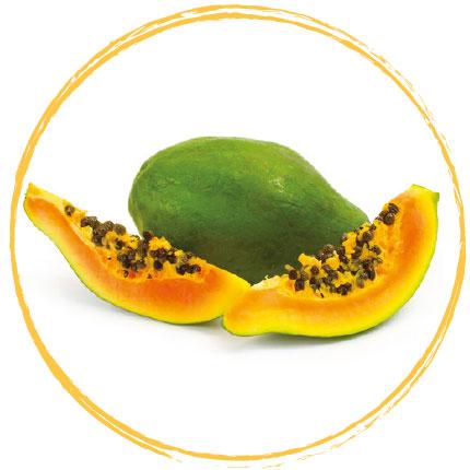 Purée de papaye